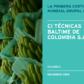 Columbia Case Study - Spanish