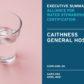 Caithness Executive Summary